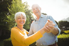 Senior couple dancing in park Stock Image