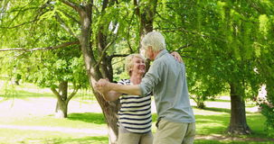 Senior couple dancing in the park stock video