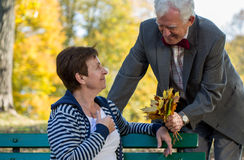 Senior couple dating in park Stock Image