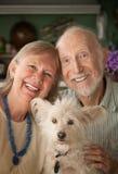 Senior Couple With Dog. Senior couple with cute white dog royalty free stock photography