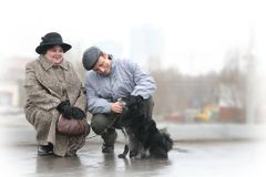 Senior couple with dog Stock Images