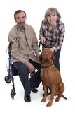 Senior couple with a dog stock photo