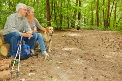 Senior couple with dog in a forest Stock Images