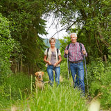 Senior couple with dog on a hike Stock Photography