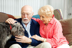 Senior Couple - Dog Lovers Royalty Free Stock Image