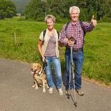 Senior couple with dog in nature Royalty Free Stock Image