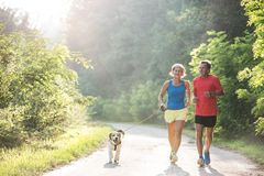 Senior couple with dog running in green sunny nature. Active senior couple with dog running outside in green sunny nature stock images
