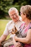 Senior couple with dog Royalty Free Stock Image
