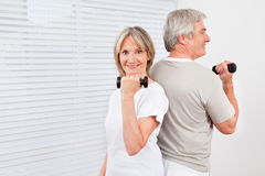 Senior couple doing dumbbell Stock Photo