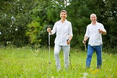 Senior couple doing nordic walking in summer Royalty Free Stock Photo