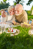 Senior couple doing a picnic in nature Stock Photo