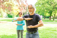 Senior Couple Doing Tai Chi In Park, Tuebingen, Germany. Senior couple doing tai chi in public park, Tuebingen, Germany Stock Photos