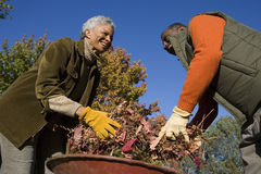 Senior couple doing yard work in autumn Royalty Free Stock Image