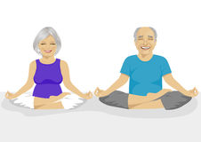 Senior couple doing yoga. Body and mind in harmony with nature. Royalty Free Stock Photo