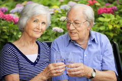 Senior couple with drinking glasses. Happy senior couple sitting in the garden to clink glasses Stock Photography