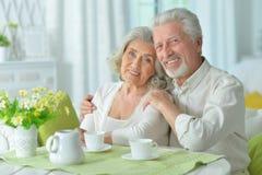 Senior couple drinking tea Stock Images