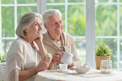 Senior couple drinking tea Royalty Free Stock Photo
