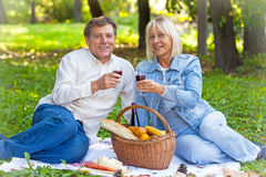 Senior couple drinking wine. On picnic Royalty Free Stock Image