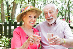 Senior Couple Drinks Champagne Royalty Free Stock Photos