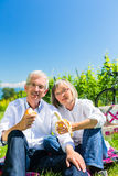 Senior couple eating and drinking at picnic in summer Royalty Free Stock Photos