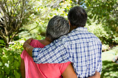 Senior couple embracing each other in garden on a sunny day Stock Image