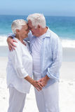 Senior couple embracing head to head Royalty Free Stock Photos