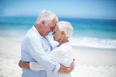 Senior couple embracing head to head Royalty Free Stock Images