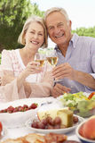 Senior Couple Enjoying Outdoor Meal Together Stock Images