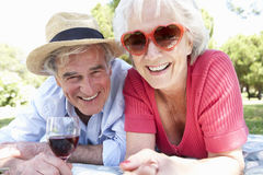 Senior Couple Enjoying Picnic Together Royalty Free Stock Photo