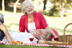 Senior Couple Enjoying Picnic Together royalty free stock image