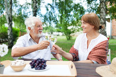 Senior couple enjoying themselves outdoors Royalty Free Stock Images