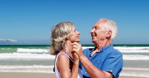 Senior couple enjoying together at the beach stock video