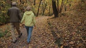 Senior couple enjoys romantic walk in autumn park stock video footage
