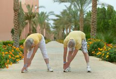 Senior couple execise Royalty Free Stock Image