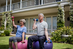 Senior couple exercising with dumbbells on fitness ball. In lawn Royalty Free Stock Image