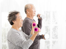 Senior couple exercising with dumbbells. Happy senior couple exercising with dumbbells Stock Photography