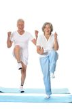 Senior couple exercising Stock Photo