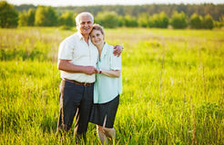 Senior couple in a field Royalty Free Stock Photo
