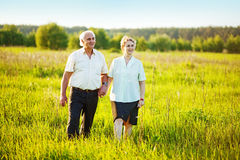 Senior couple in a field Royalty Free Stock Photos