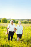 Senior couple in a field Royalty Free Stock Photography