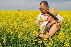 Senior couple in a field of rape Stock Image
