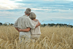 Senior couple on field of wheat Royalty Free Stock Photography
