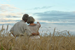 Senior couple on field of wheat Stock Photo