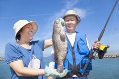 Free Senior Couple Fishing And Showing Big Grouper Stock Images - 31337994