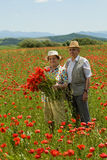 Senior couple on the flower field Royalty Free Stock Photos
