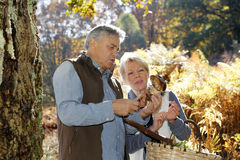 Senior couple in forest picking up mushrooms Royalty Free Stock Image