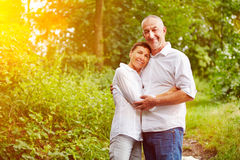 Senior couple in forest in summer Stock Photography
