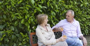 Senior Couple in the Garden Stock Photography