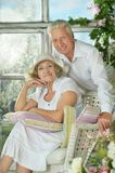 Senior couple in garden on bench Stock Images