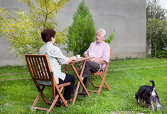 Senior couple in garden Stock Images